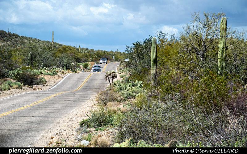 Pierre GILLARD: Tucson Mountain Park &emdash; 2019-528635