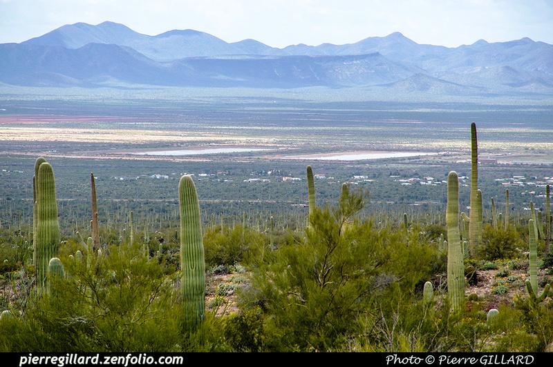 Pierre GILLARD: Tucson Mountain Park &emdash; 2019-528663