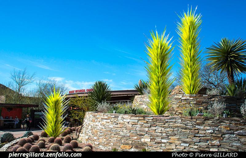 Pierre GILLARD: Phoenix - Desert Botanical Garden &emdash; 2019-529503