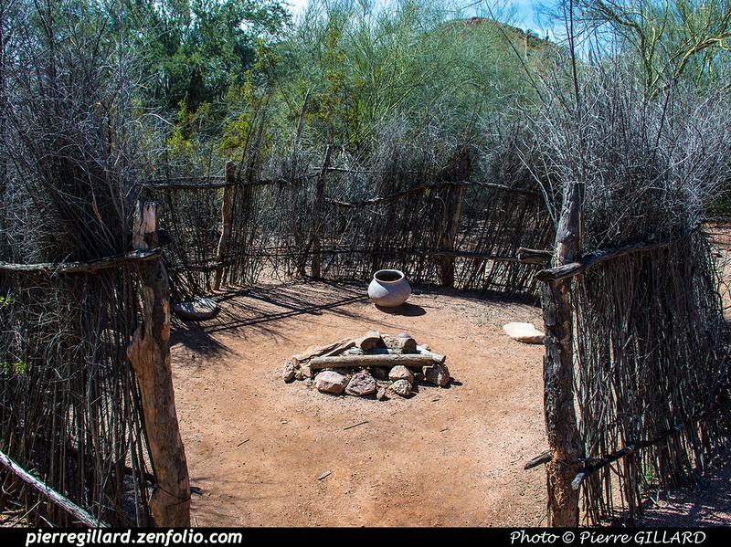 Pierre GILLARD: Phoenix - Desert Botanical Garden &emdash; 2019-529622