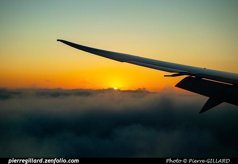 Pierre GILLARD: In Flight - En vol &emdash; 2020-532284