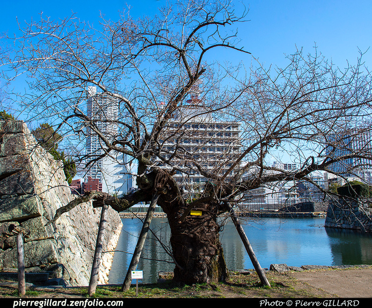 Pierre GILLARD: Hiroshima - 広島市 &emdash; 2020-532436