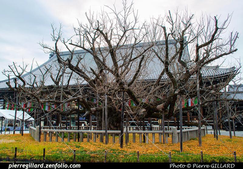 Pierre GILLARD: Kyoto (京都市) &emdash; 2020-532948