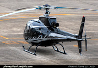 Japan - Private Helicopters