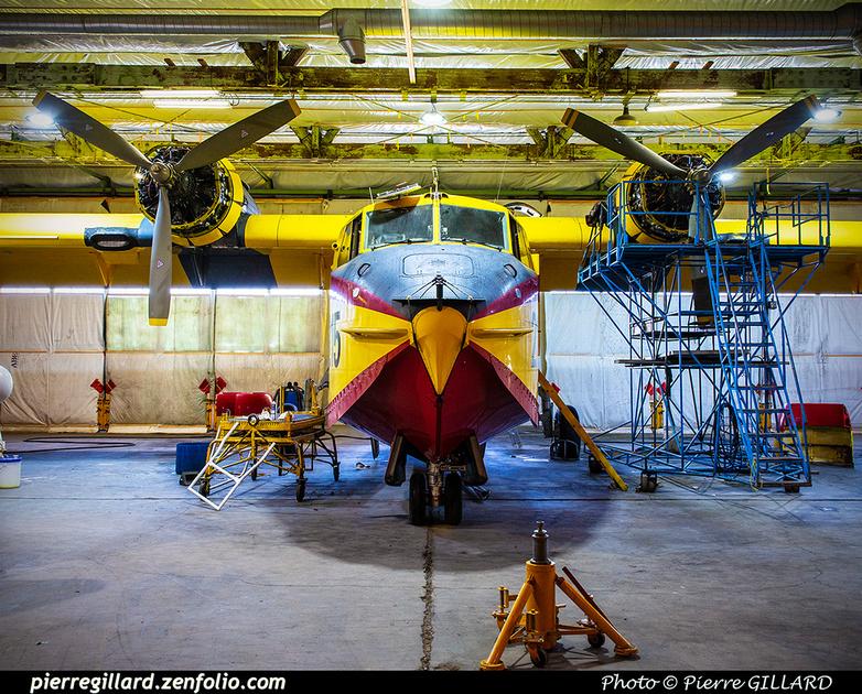 Pierre GILLARD: Canadair CL215 &emdash; 2020-426787