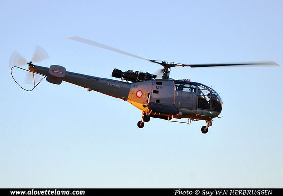 Pierre GILLARD: Malta - Armed Forces of Malta &emdash; 030327