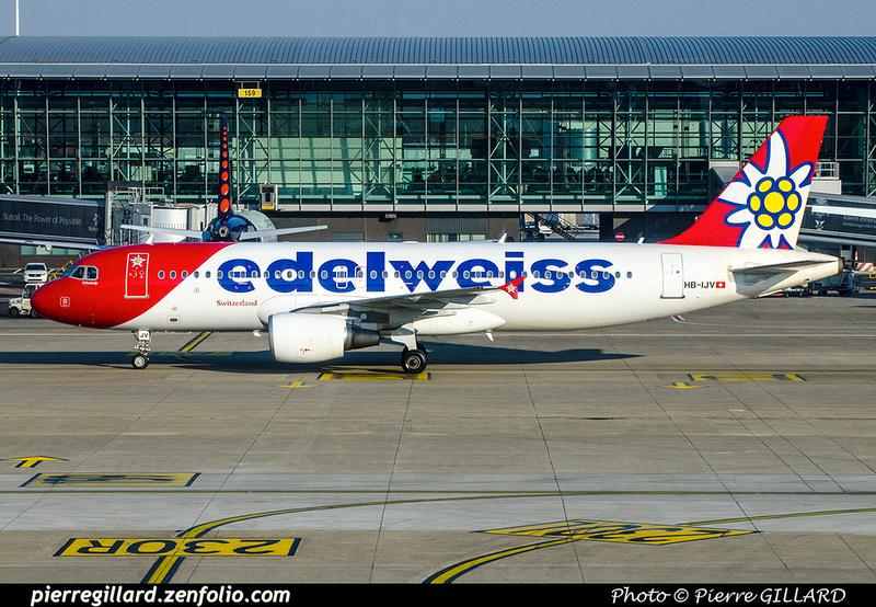 Pierre GILLARD: Edelweiss &emdash; 2018-706693