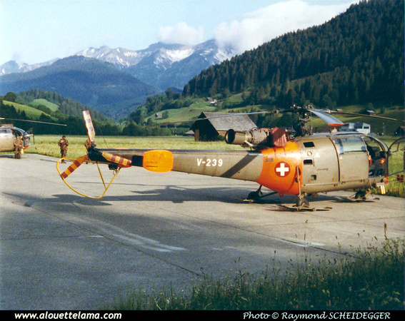 Pierre GILLARD: Forces Aériennes - Alouette III &emdash; V239-008548
