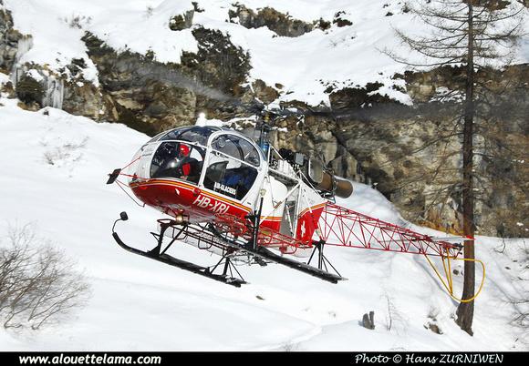 Pierre GILLARD: Air Glaciers - Alouettes & Lamas &emdash; XRL-003293