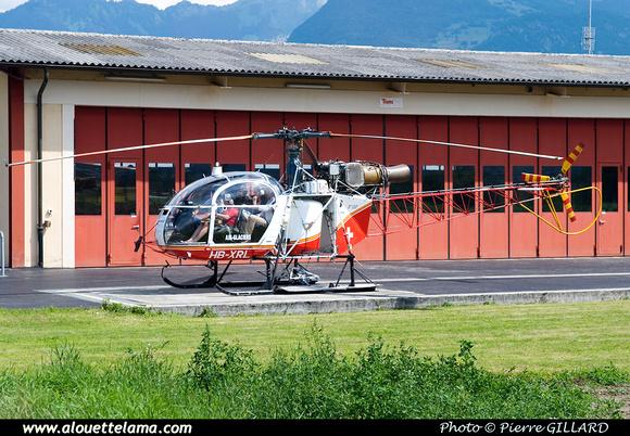 Pierre GILLARD: Air Glaciers - Alouettes & Lamas &emdash; XRL-003503