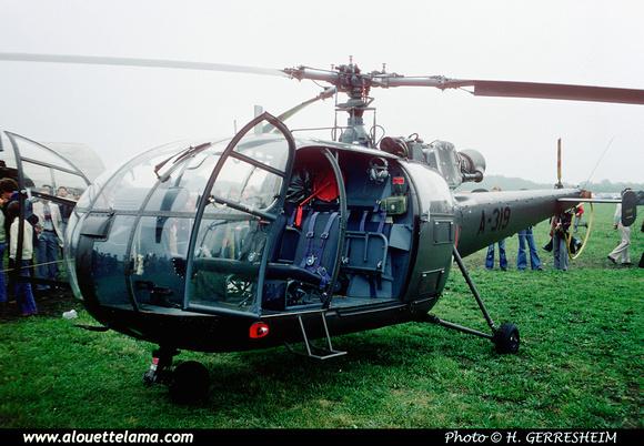 Pierre GILLARD: Koninklijke Luchtmacht - Alouettes &emdash; 005089