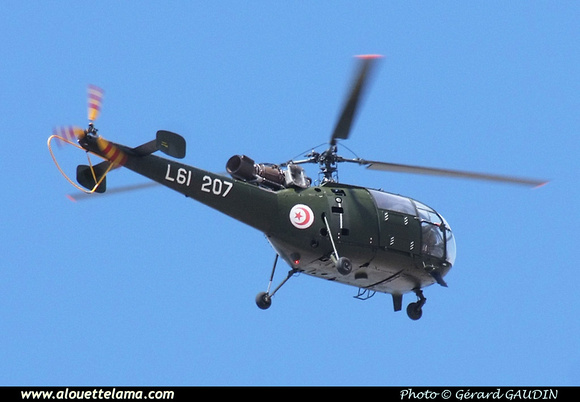Pierre GILLARD: Tunisia - Air Force - Armée de l'Air - القوات الجوية التونسية &emdash; 008843