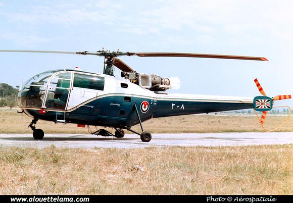 Pierre GILLARD: Jordan - Air Force - سلاح الجو الملكي الأردني - Silāḥ ul-Jawu al-Malakī 'al-Urdunī &emdash; 008597