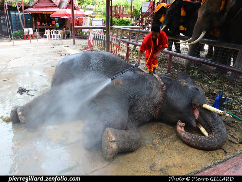 Pierre GILLARD: Ayutthaya &emdash; 2016-515328