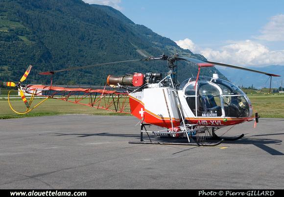 Pierre GILLARD: Air Glaciers - Alouettes & Lamas &emdash; XVL-003502