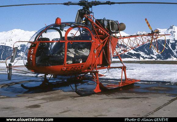 Pierre GILLARD: SAF - Alouettes & Lamas &emdash; 005480